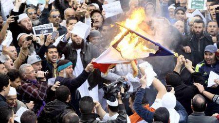 2016-07-29-14-40-18.moslims verbranden franse vlag 02
